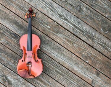 増田太郎バイオリニスト(およよマン作曲)の年齢、経歴は?家族(父・母)は誰でどんな人?【動画あり】