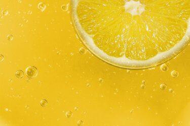 2021年カルディ限定レモンバッグの予約方法や通販は?発売日や商品内容/口コミも調査