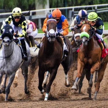 セレクトセールでサイバーエージェント藤田社長が競走馬爆買い!購入馬の血統や経歴は?