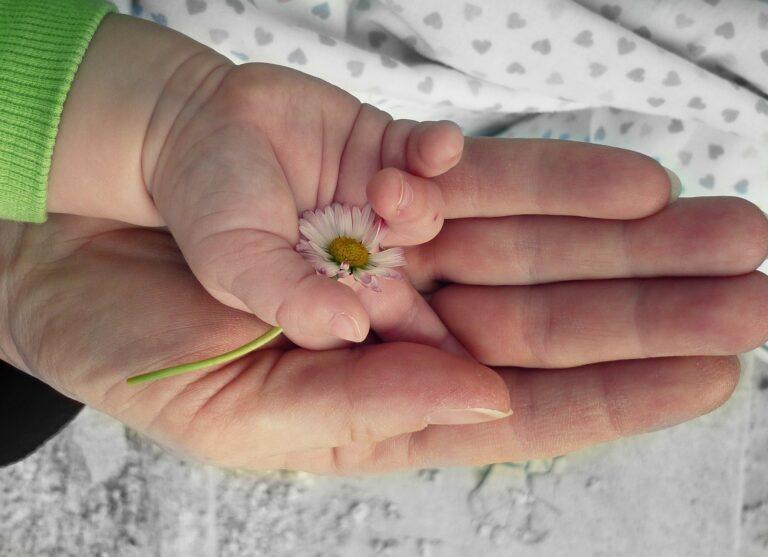 米山ババ子の妻や子供は?について書いた記事に使用した写真です。